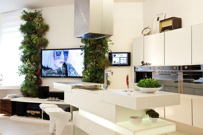 tecnologias e natureza na decoração